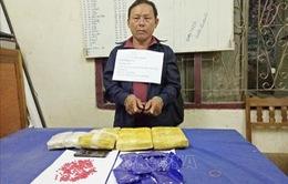 Bắt giữ đối tượng vận chuyển 18.000 viên ma túy tổng hợp