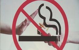 """Mô hình """"Điểm du lịch không khói thuốc"""" tại Hà Nội"""