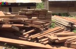 Quảng Bình: Tịch thu gỗ lậu trong trụ sở UBND xã