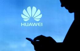 Huawei thử nghiệm HongMeng OS trên 1 triệu smartphone