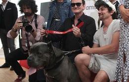 Diễn viên chó xuất sắc nhất tại LHP Cannes 2019