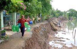 Nguy cơ sạt lở tăng cao vào mùa mưa tại ĐBSCL