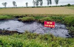 Hàng trăm tấn chất thải độc hại đổ trái phép ra môi trường