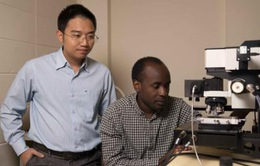 Nhóm nghiên cứu ở Australia mở khóa tiềm năng vật liệu 2D siêu mỏng