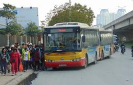 Mở tuyến bus Hà Đông - Nội Bài từ tháng 6