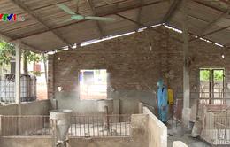 Kinh nghiệm chi trả hỗ trợ các hộ nuôi lợn bị dịch tả châu Phi tại Vĩnh Phúc