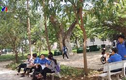 Đã rõ người làm lộ đề khiến 10.000 học sinh THPT Bình Thuận phải dừng thi