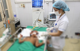 Ngủ quên trên lưng trâu, bé gái 9 tuổi bị kéo lê gây chấn thương sọ não