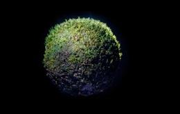 Phiên bản trái đất tí hon của nghệ sĩ người Chile