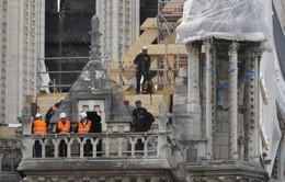"""Nhà thờ Đức bà Paris có thể được phục chế thành """"ngôi nhà xanh"""""""