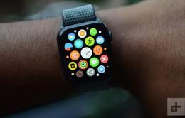 Cứ 3 chiếc smartwatch bán ra thì có hơn 1 chiếc Apple Watch