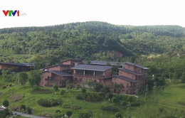 Trung Quốc dồn sức cải thiện môi trường sinh thái