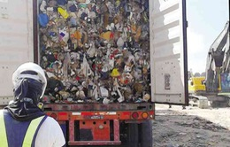 Canada sẽ phải nhận lại các container rác thải