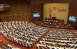 Nhiều đại biểu Quốc hội quan tâm đến cổ phần hóa DNNN