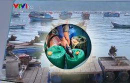 Phú Yên: Phạt 77 triệu đồng doanh nghiệp bán dầu trái phép