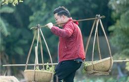 Thần tượng Bolero 2019: Quang Lê làm gãy cầu dừa, ngã nhào xuống bùn vì quá béo