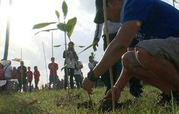 Muốn tốt nghiệp, mỗi học sinh Philippines phải trồng 10 cây xanh
