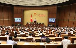 Quốc hội thảo luận về kinh tế - xã hội, ngân sách nhà nước