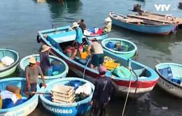 Bán dầu trái phép cho tàu cá trong khu dân cư