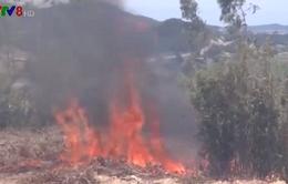 UBND tỉnh Quảng Ngãi yêu cầu làm rõ các vụ cháy rừng liên tiếp tại Bình Sơn