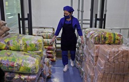 Triều Tiên cần thêm khoảng 1,36 triệu tấn ngũ cốc trong năm 2019