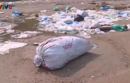 Rác thải nhựa dồn ứ vùng ven bờ Vịnh Vũng Rô