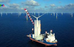Xu hướng phát triển các trang trại điện gió ở Hà Lan