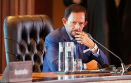 Brunei hoãn luật tử hình ném đá đến chết người tình dục đồng giới