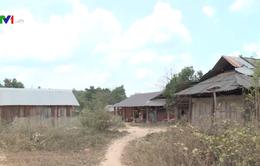 Đắk Lắk phát sinh 5 điểm dân di cư tự do mới