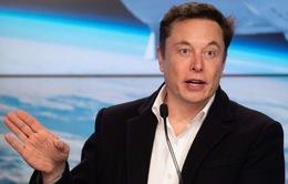 Tesla dự kiến bước chân vào lĩnh vực bảo hiểm
