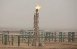 Giá dầu thế giới giảm do lo ngại nhu cầu yếu