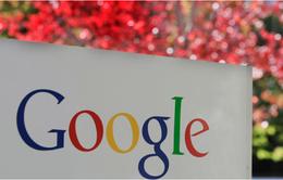 Google sắp ra công cụ tìm kiếm mới