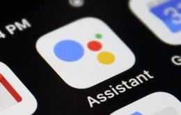 Google Assitant tiếng Việt đã có mặt trên iPhone