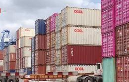 Sẽ buộc tái xuất container rác phế liệu không đủ tiêu chuẩn