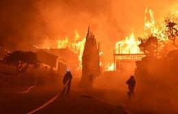 Mỹ: Cháy lớn ở công viên, nhiều người phải sơ tán