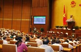 Quốc hội sẽ giám sát việc phòng, chống xâm hại trẻ em