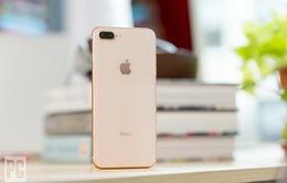 Apple phát hành iOS 12.3.2: Người dùng iPhone 8 Plus chú ý!