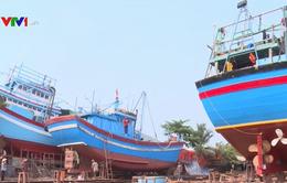 Bình Định công bố hạn ngạch giấy phép khai thác thủy sản
