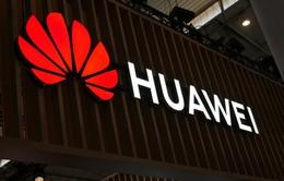 """Huawei """"cầu cứu"""" các nhà phát triển sử dụng kho ứng dụng của mình"""