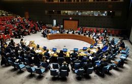 Liên Hợp Quốc gia hạn cấm vận vũ khí đối với Libya