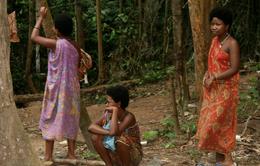Malaysia điều tra bệnh lạ làm nhiều người tử vong