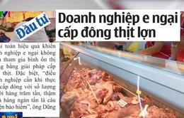 Doanh nghiệp sợ rủi ro khi tham gia cấp đông thịt lợn