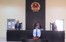 """Hoãn phiên tòa phúc thẩm vụ kiện """"Thần đồng đất Việt"""""""