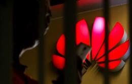 Báo Trung Quốc: Hệ điều hành của Huawei sẽ nhanh gấp 60% so với Android