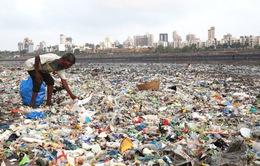 """Báo động về lượng nhựa mà con người """"nạp"""" vào cơ thể"""