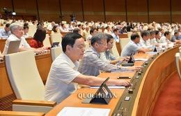 Quốc hội biểu quyết Luật Quản lý thuế (sửa đổi), Luật Đầu tư công (sửa đổi), Luật Kiến trúc