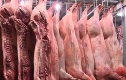 Nhập khẩu thịt lợn tăng hơn 6 lần
