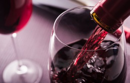 Rượu vang làm tăng nguy cơ mắc bệnh ung thư ở phụ nữ?