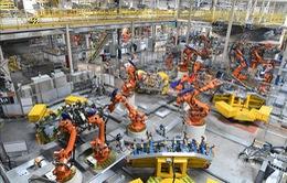 Robot sẽ không thể thay thế hoàn toàn con người trong tương lai