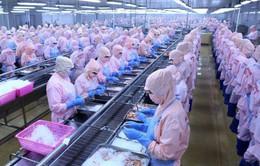 Ngành thủy sản sụt giảm doanh thu xuất khẩu